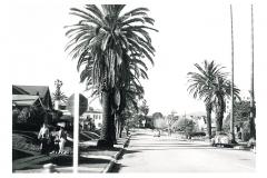 Beverly Hills - 017