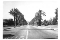Beverly Hills - 224